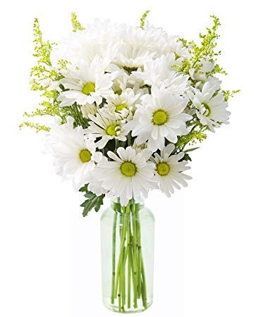 Sweet Daisies Vase