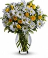 Sweet Daisy Bouquet Spring Flowers