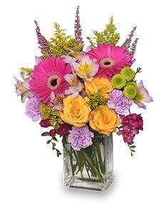 Spring Hopeful                vased