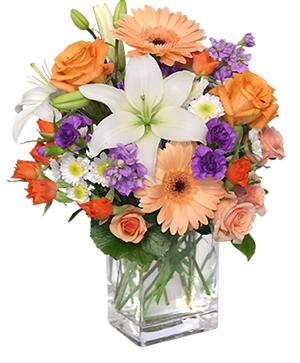 SWEET GEORGIA PEACH Flower Arrangement in Herndon, PA | BITTERSWEET DESIGNS BY LORRIE