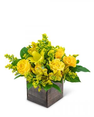 Sweet Honey Flower Arrangement in Nevada, IA | Flower Bed