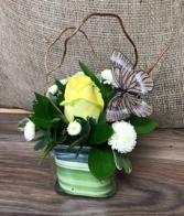 Sweet lemon Cube vase