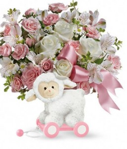 Sweet Little Lamb Pink in Wickliffe, OH | WICKLIFFE FLOWER BARN