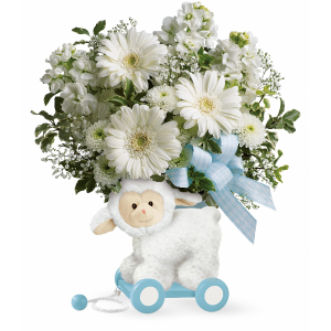 Sweet Little Lamb - Baby Blue  in Vancouver, BC | ARIA FLORIST