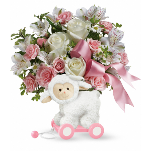 SWEET LITTLE LAMB - BABY PINK  in Vancouver, BC   ARIA FLORIST