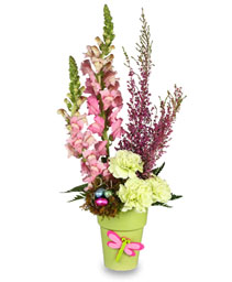 SWEET MEADOW Spring Arrangement
