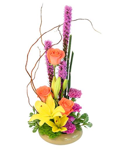 Sweet Oasis Floral Design
