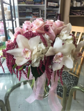 Sweet Orchids