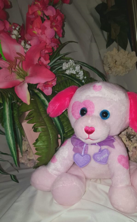 Sweet Pup Stuffed animal available as add on only