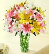 Sweet Spring Lilies Arrangement