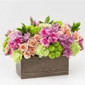 Sweet Summer Blooms wooden flower box