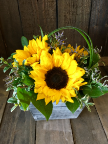 Sweet Sunflowers Fresh Floral Design