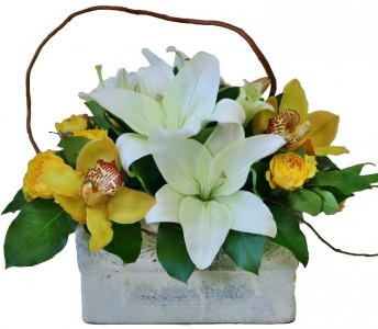 MISTY SUNRISE Arrangement of Flowers