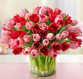 Sweetest Love Tulips