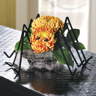 Sweetest Spider Arrangement Table, low profile