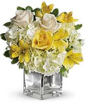 Sweetest Sunrise Bouquet Cube Teleflora