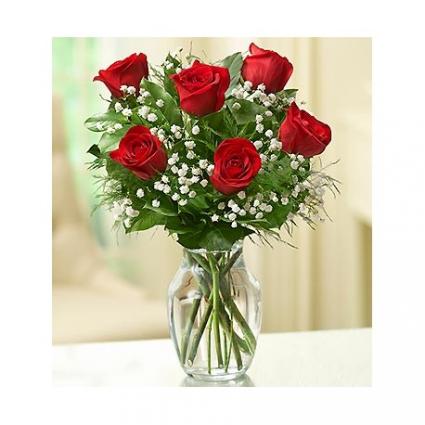 Sweetheart  Half dozen roses