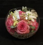 Sweetness Bubble Bowl