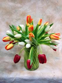 Swirled Tulips
