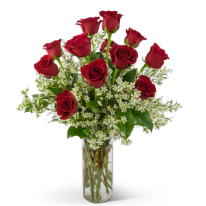 Swoon Over Me Dozen Red Roses Arrangement in Saugerties, NY | THE FLOWER GARDEN