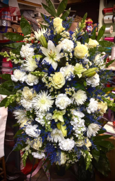 SYMPATHY BLUE AND WHITE