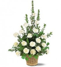 Simply White Carnations Sympathy Arrangement