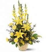 Yellow Assortment Sympathy Arrangement
