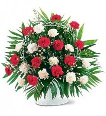 Red & White Carnations Funeral Arrangement