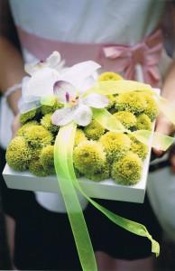 T & S Wedding Rings