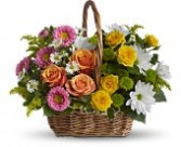 T213-2A Sweet Tranquility Basket All Occasions