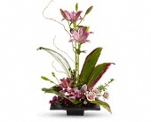 Zen Garden  All,Mothers Day, Birthday, Sympathy
