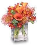 TA-5- Tropical flowers in a compact arrangement FLowers and colors may vary