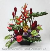 TA-11- Tropical flowers in a modern arrangement Flowers and colors may vary