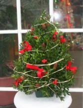 Table Top Boxwood Tree Arrangement