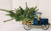 Taking the Tree Home Fresh Gift Arrangement