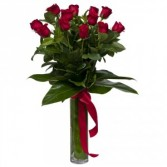 Tall Exotic Red Roses