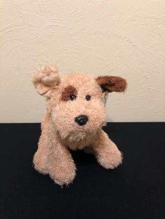 64b1111c7431 Tan and Brown Puppy Stuffed Plush in Boise, ID - HEAVENESSENCE ...