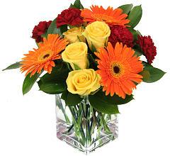 Tangerine dreams fresh arrangement
