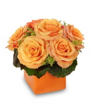 Tangerine Twist Roses Bouquet in Dickinson, TX | ROSE PETAL FLOWERS