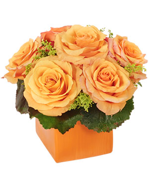 Tangerine Twist Roses Bouquet in Tell City, IN | FLOWERS BY LES'A
