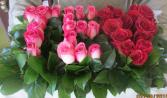 Te Amo! Valentine Day