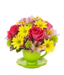 Tea cup flowers everyday