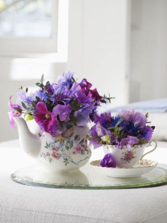 Tea pot and tea cup set