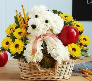 Teacher's Pet™ Arrangement in Croton On Hudson, NY | Cooke's Little Shoppe Of Flowers