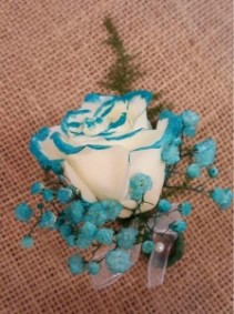 Teal Tipped Rose Boutonniere