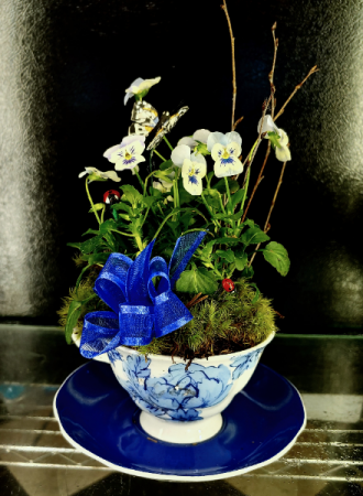 Mini Pansy Teacup of Spring