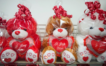 TEDDIES BEAR! Valentine's Day And Special's Day