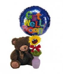 Teddy Bear Bundle- sunflower, balloon, and bear Gift