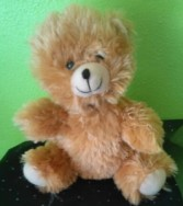 Teddy Bear Small gift or add on