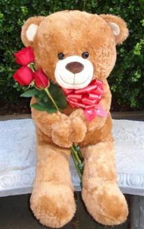 TEDDY BEAR WITH ROSES Large Teddy Bear holding Fresh Roses